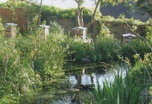Lilac Cottage – TA11