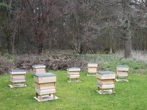 Bucks Berks & Oxon Bee Improvement (BBOBI ) – RG9