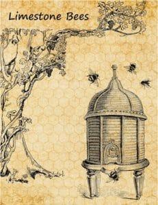 Bloomington Bees - USA