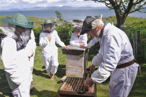 Scottish Native Honey Bee Society gathering for an inspection