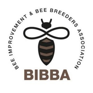 BIBBA Monthly - April 2021